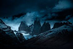 Wild Iris - landscape-photo-graphy:    Andy Lee Beautifully...