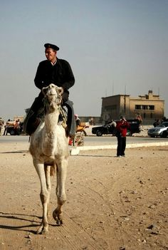 Mountie - Egyptian Style
