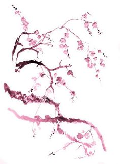 Cherry Blossom Tattoo Drawings | photo ist2_396513-cherry-blossom-drawing.jpg