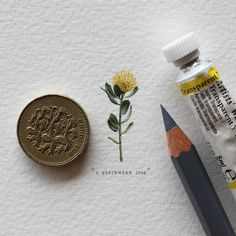 thefrogman:   365 Postcards For Ants by Lorraine Loots...