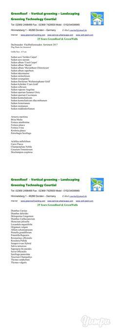 Wir Sind Ein Hoch Motiviertes Und Erfahrenes Team Für Den Bereich ... Pflanzen Fur Dachbegrunung Dachgarten