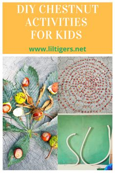 Fall time brings fun with it. Try these 3 chestnut activities with your kids. Click through now and see our activities. #chestnutfun #diy