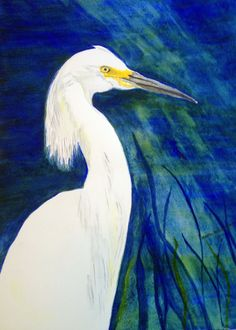 Original watercolor of an egret entitled Snowy by SplashesofWater, $70.00