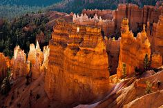 Photograph by Philip Bird  Photograph by Philip Bird     Bryce Canyon Sculpted by Nature (Bryce Canyon, UT)       Read more: http://www.smithsonianmag.com/multimedia/editors-picks/?c=y&date=04/12/2011#ixzz1bWlv4041                                                        Bryce Canyon Sculpted by Nature (Bryce Canyon, UT)