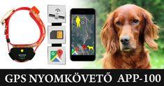 #gps #nyomkövető #kutya #vadász #vadászat #vadászkutya #hunter #hunting Dogs, Animals, Animales, Animaux, Pet Dogs, Doggies, Animal, Animais