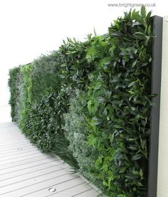 Ordinaire Close Up Of The Exterior Artificial Green Wall Balcony Divider