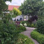 Se foton och videoklipp från Annas Trädgård Kesnäs (@annamelan) på Instagram