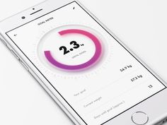 Fitness Goal Meter by Miklos Barton