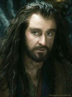 Thorin Oakenshield. More like Thorin Smokinshield! What a beauty! :) 《Yjorin Smokinshield!