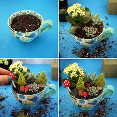 Create a Miniature Teacup Garden