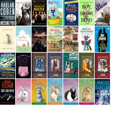 """Wednesday, March 19, 2014: The Sutton Free Public Library has eight new bestsellers, four new videos, one new audiobook, 22 new children's books, and 11 other new books.   The new titles this week include """"Frozen,"""" """"Missing You,"""" and """"Uganda Be Kidding Me."""""""