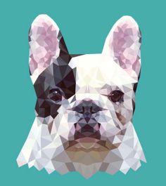 Striking And Vibrant Geometric Vector Illustrations Of Animals - DesignTAXI.com