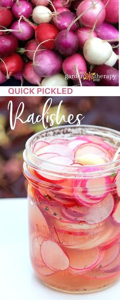 Re-introduce yourself to the radish: go grab a bunch of and pickle them. This recipe is surprisingly addictive and easy to make. #gardentherapy #pickles #radish #gardentotable