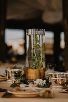 Underwater plants + gold accents | Image by LAYERS Photography