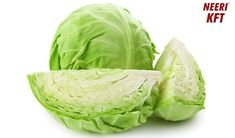 #kidneydisease patients should eat #cabbage as it is good for their medical condition