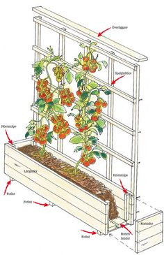 Bygg en odlingslåda med spaljé   Trädgårdsskötsel   Trädgård  