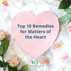 February is the month dedicated to love! But if that's not how you're feeling right now, and your heart needs some gentle healing, here are my Top 10 Remedies for Matters of the Heart. Click here #valentinesday #mattersoftheheart #hearthealth #emotionalhealing #emotionalhealth #hearthealth #hearthealth #hearttoheart #heartbroken #grief #Aconitumnapellus #Argentumnitricum #AurumMuriaticum #Lachesis #Ignatia #NatMur #PhosphoricAcid #Pulsatilla #Spigelia #Staphisagria #homeopathy… Emotional Healing, Health Matters, Heart Health, Homeopathy, Grief, February, Remedies, Top, Sepia Homeopathy