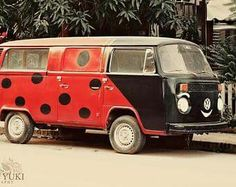 Quite literally it's a BugBus! Well, a Lady BugBus tbf