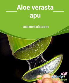 Aloe verasta apu ummetukseen   #Aloe Vera on läpinäkyvää geeliä #tuottava vihreä kasvi. Tätä geeliä voidaan käyttää moneen vaivaan, esimerkiksi #palovammoihin, haavoihin ja ummetukseen.  #Luontaishoidot