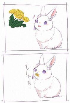 @) 포악한 늑대와 토끼.manga   유머 게시판   루리웹 모바일 Cute Art Styles, Fanart, Anime Animals, Pet Rabbit, Anime Girl Cute, Re Zero, Anime Screenshots, Anime Artwork, Cute Gif