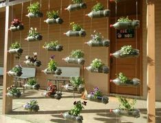Urban Garden Design Plastic bottles used in vertical garden; Simple and awesome! More - Great for the gardener who wants to save space, vertical gardens serve many purposes. Herb Garden, Garden Art, Garden Design, Garden Boxes, Porch Garden, Garden Water, Diy Garden, Fruit Garden, Garden Crafts