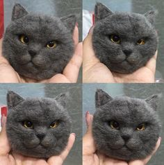 Needle felting wool cute animal cat (Via @dreamchaser_woolfelt)
