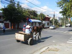 Gypsy Romania, Gypsy, Street View