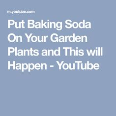 Put Baking Soda On Your Garden Plants and This will Happen - YouTube