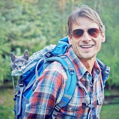 """3,392 gilla-markeringar, 22 kommentarer - Adventure Cats (@adventurecatsorg) på Instagram: """"Have you resolved to go on feline-friendly adventures this year? Here's how to get started:…"""""""