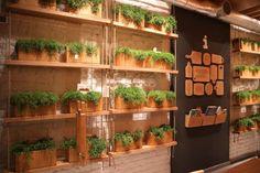 brandon-agency-simple-restaurant-8 pinned with Pinvolve - pinvolve.co Mooie wand met planten en leuke wand. gedeeld door www.ge-woonadvies.nl