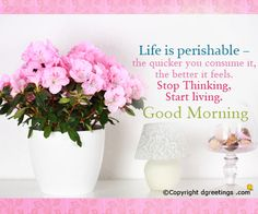 Life is perishable the quicker you consume it.