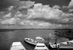 Federsee in Bad Buchau, 1937 Timeline Classics/Timeline Images #30er #30s #Federsee #See #Boot #black #white #schwarz #weiß #Fotografie #photography #historisch #historical #traditional #traditionell #retro #nostalgic #Nostalgie #Himmel #Horizont #Aussicht #Ausblick #Ausguck #Wolken