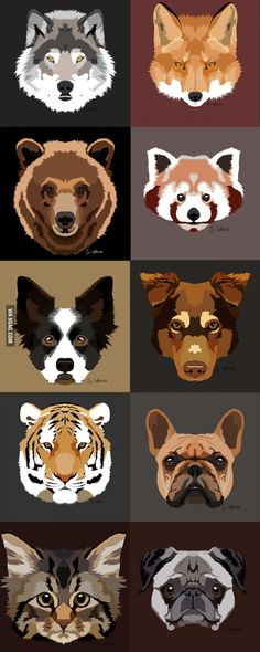 What do you think guys? My new project: Animals' faces. I can draw your pet too.