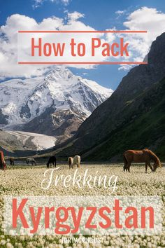 Kyrgyzstan is off the beaten path for most travelers but it is an excellent place for hiking. Margaux shares her packing list for trekking in Kyrgyzstan, complete with a full gear rundown.