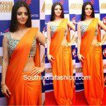 Vedhika in Plain Saree and Designer Blouse