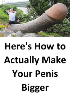 Penis muscle building
