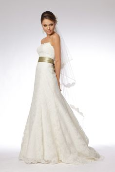 Watters Delphine Lace Gown. This looks almost exactly like my wedding dress!