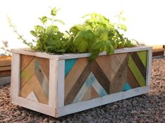 "This is a custom built Herbes de Provence Box. Size 27.5""L x 11.5""W x 10.5""H. This planter was designed with herb gardens in mind. S..."