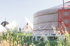 Some of our gorgeous eco yurts and tents to come and have a lovely stay in.