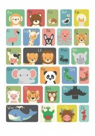 Kleurrijk geïllustreerde Nederlandstalige ABC poster met vrolijke dieren figuren. Je kunt de poster ophangen in een lijst of direct op de muur met behulp van masking tape.Goed te combineren met de overige posters en kaarten van Studio circus.