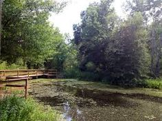 Image result for Armand Bayou Nature Center