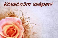 KÖSZÖNÖM KÉPESLAPOK - tanitoikincseim.lapunk.hu Vegetables, Google, Vegetable Recipes, Veggies