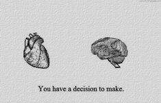 heart, brain, and decisions kép