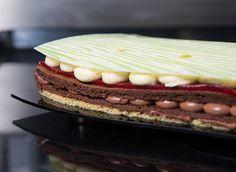 World Chocolate Masters 2013 - Latin America Latin America, Masters, Plate, Chocolate, Dark, World, Ethnic Recipes, Artwork, Desserts