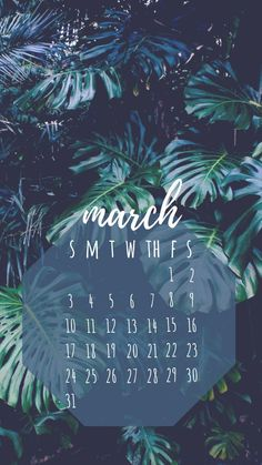 The 10 March iPhone Calendar wallpaper is free, floral, natural, urban themed calendars and lots of vector for you. Marble Wallpaper Phone, Accent Wallpaper, Apple Watch Wallpaper, Wallpaper Iphone Disney, Laptop Wallpaper, Wallpaper Backgrounds, March Backgrounds, Phone Backgrounds, Walpapers Iphone