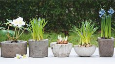 DIY Concrete Planters tutorial