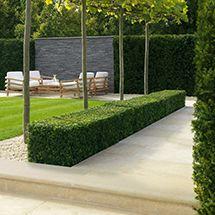 samistone cinderella for patio is classic and a low key luxury samistone pinterest limestone paving gardens and garden ideas