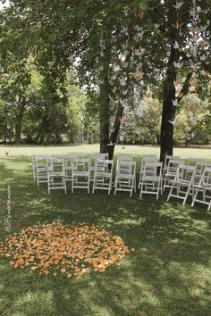 Ceremonia - Guirnaldas de grulla colgadas de los arboles