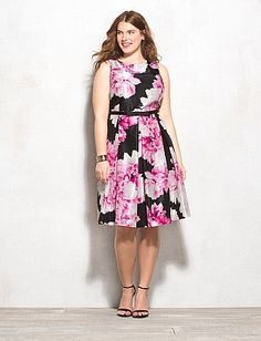 Plus Size Rose Fit-and-Flare Dress