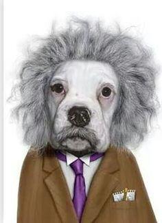 La mascota de Einstein